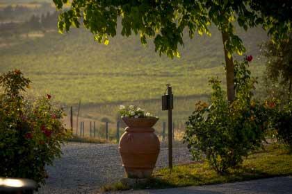 Agriturismo_collina_Firenze